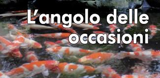 Angolo Occasioni